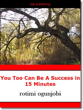 You Too Can Become A Success in 15 Minutes by Rotimi Ogunjobi