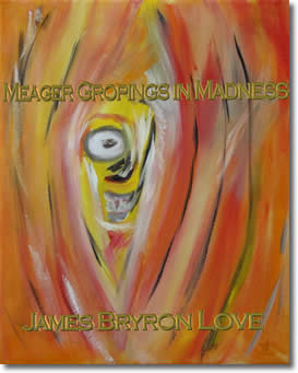 Meager Gropings in Madness by James Bryron Love