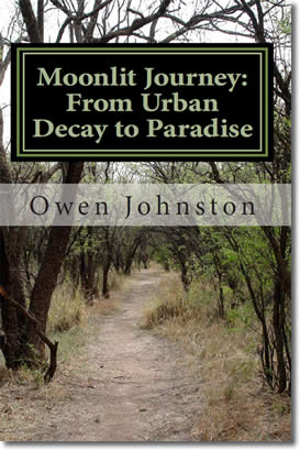 Moonlit Journey A Poetic Quest from Urban Decay to Paradise