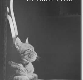 The Cat at Light's End