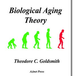 An Introduction to Biological Aging Theory