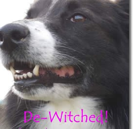 De-Witched!