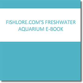 FishLore's Freshwater Aquarium Book