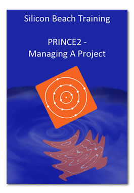 PRINCE2 Ebook Managing a Project