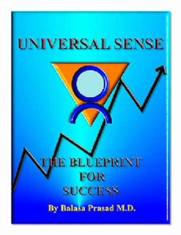 Universal Sense: The Blueprint For Success