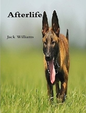 Click here to read / download - Afterlife