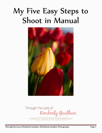 Click here to read / download - My Five Easy Steps to Shoot in Manual