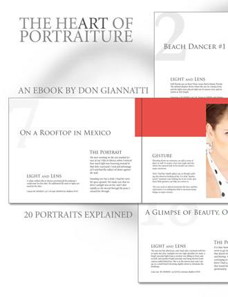 Click here to read / download - The Heart of Portraiture: 20 Portraits Discussed