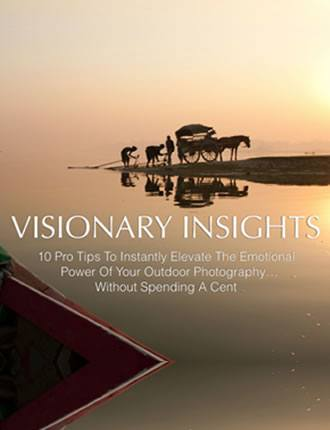 Click here to read / download - Visionary Insight