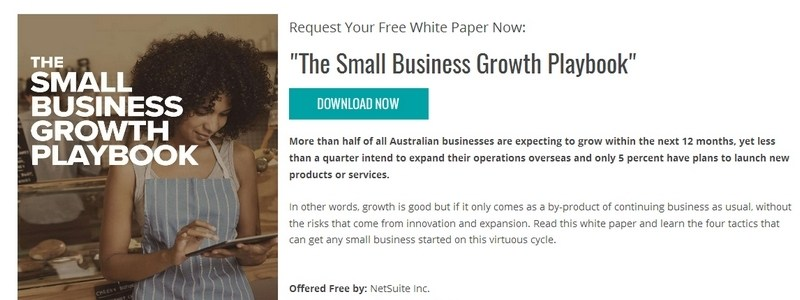 The Small Business Growth Playbook by NetSuite Inc.