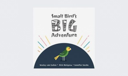 Small Bird's Big Adventure