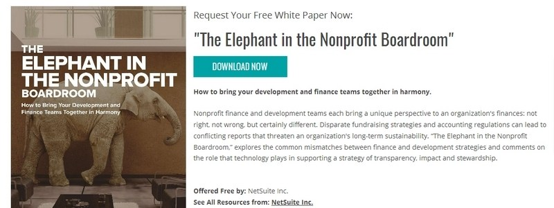 The Elephant in the Nonprofit Boardroom by NetSuite Inc.