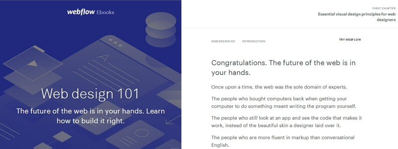 Web Design 101 - Learn How to Build It Right by Webflow
