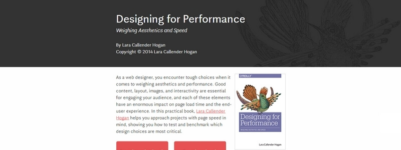 Designing for Performance: Weighing Aesthetics and Speed by Lara Callender Hogan