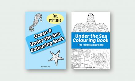 11 Free Printable Ocean & Under the Sea Colouring Ebooks