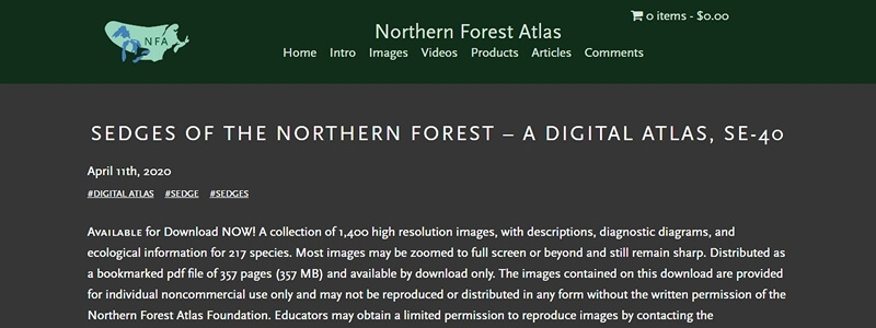 Sedges of the Northern Forest - A Digital Atlas